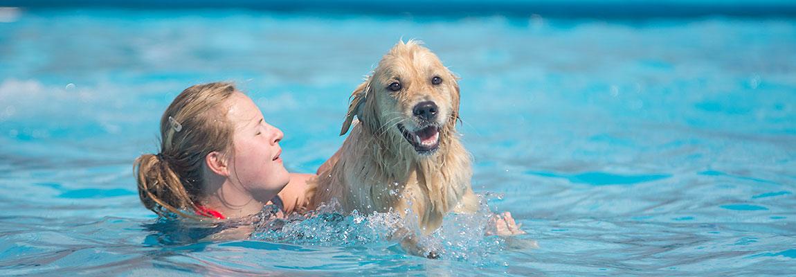 Samen zwemmen.....